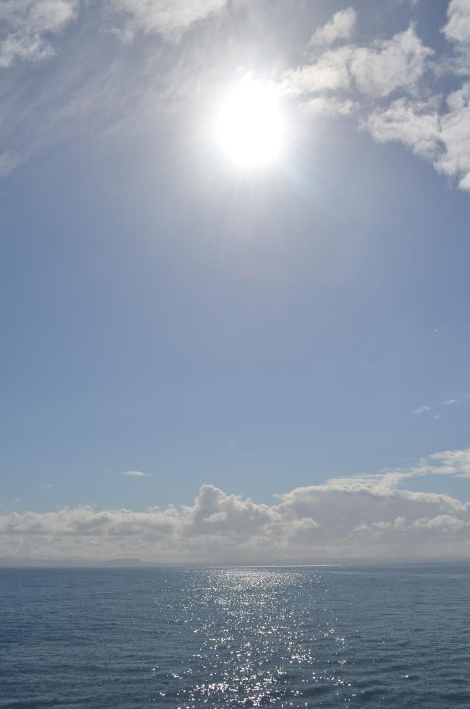 views whale watching Reykjavik