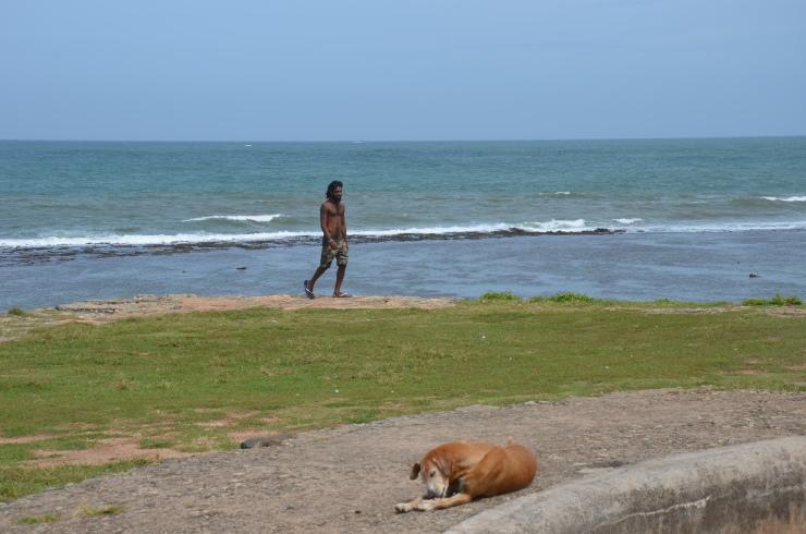 Unawatuna Galle coast shore