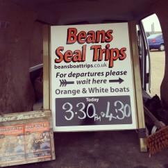 Blakeney Point Seal Trip Norfolk