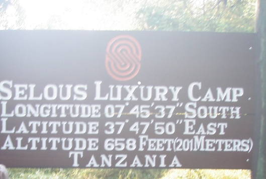 selous luxury camp safari lodge