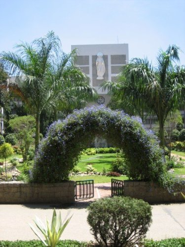 gardens St John's Bangalore