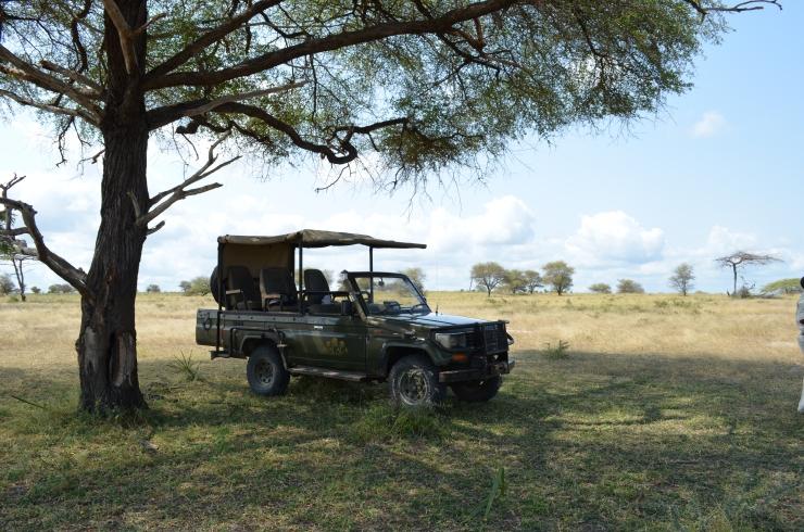 safari truck Tanzania Selous