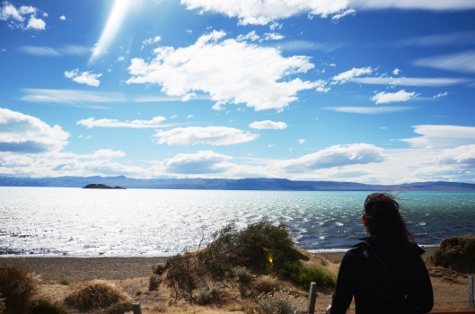 el calafate bird sanctuary scenery