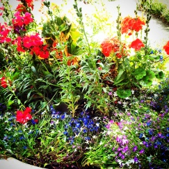 flowers Winchester hotel