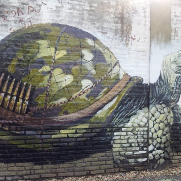 tortoise street art Buenos Aires