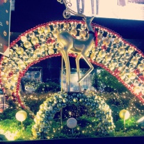red gold reindeer Christmas lights Orchard Road Singapore