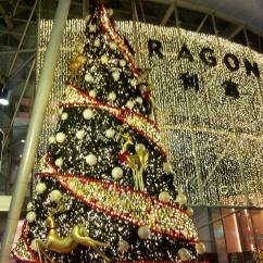 Christmas tree night lights Singappore