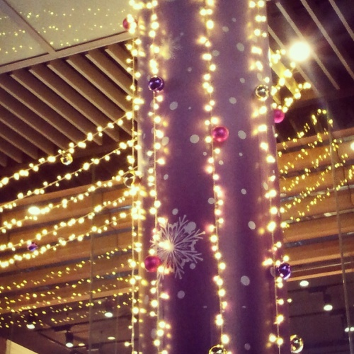 fairy lights Singapore