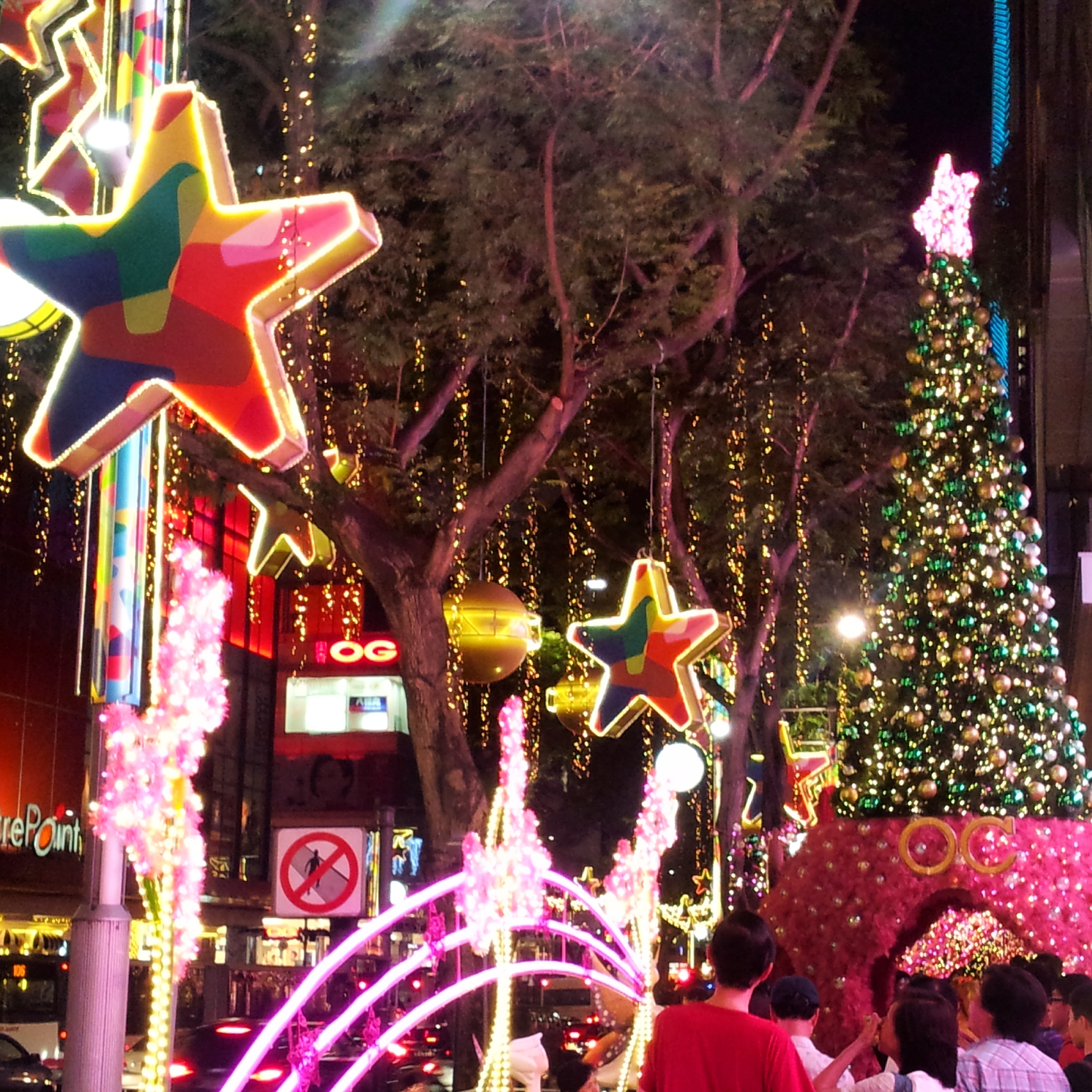 Singapore's Christmas Trees, Festive Lights And Dazzling