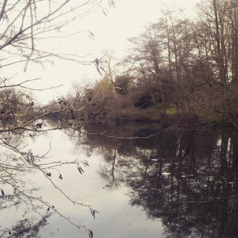 frozen lake Chiddingstone