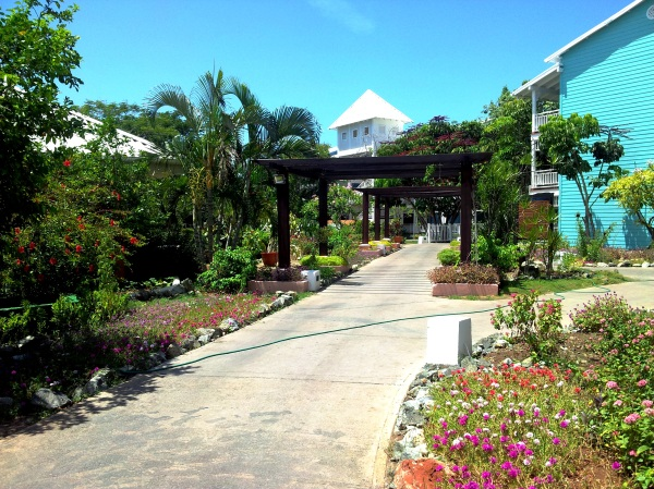 royal hicacos resort