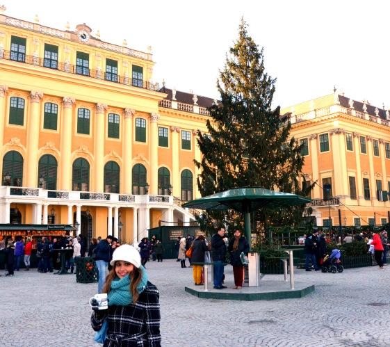 Vienna Schloss Schonbrunn Christmas Market