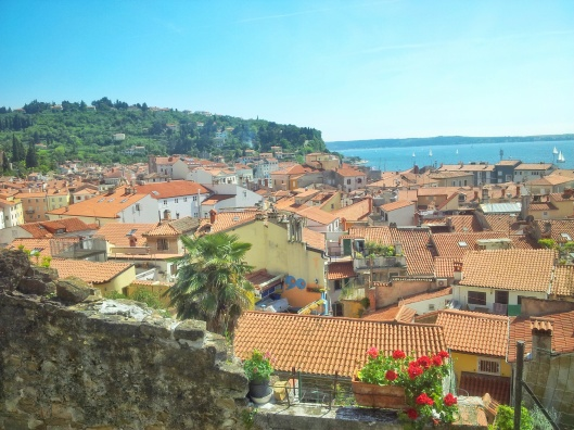 orange roof Piran aerial view