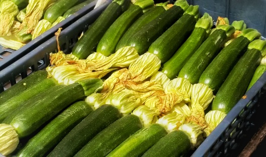 zucchini flowers Venice market