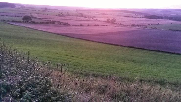 Northumberland Durham sunsets