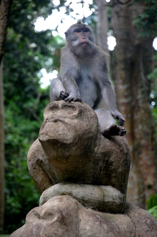 Sacred Monkey Forest Sanctuary Ubud