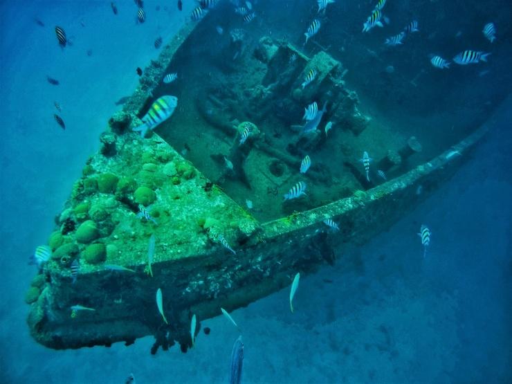 shipwreck snorkelling Barbados shore excursion