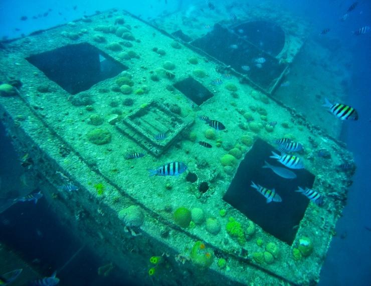 snorkelling with shipwrecks Barbados