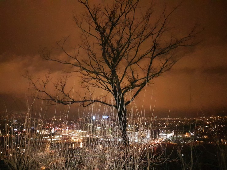 Oslo night views
