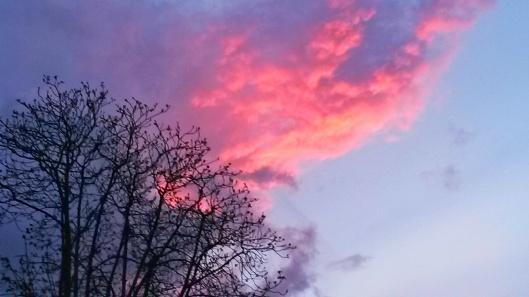 Blackheath Sunset London