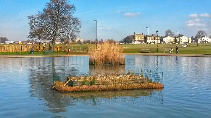 Blackheath Pond London