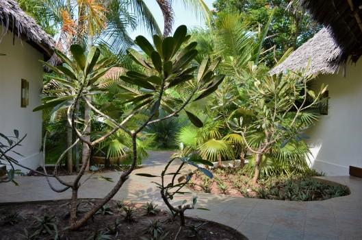 Frangipani Spa Breezes Zanzibar
