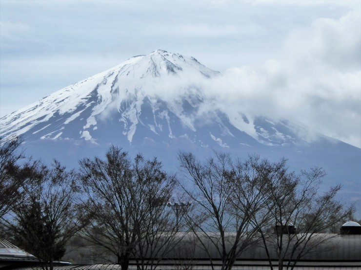 Mount Fuji one day tour