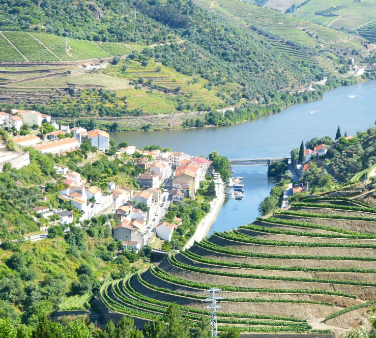 Wine Tour Douro Valley