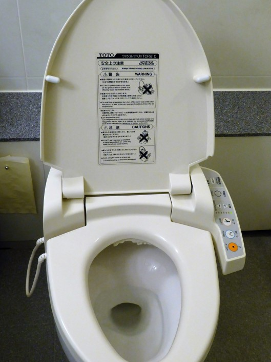 Japanese toilet tips
