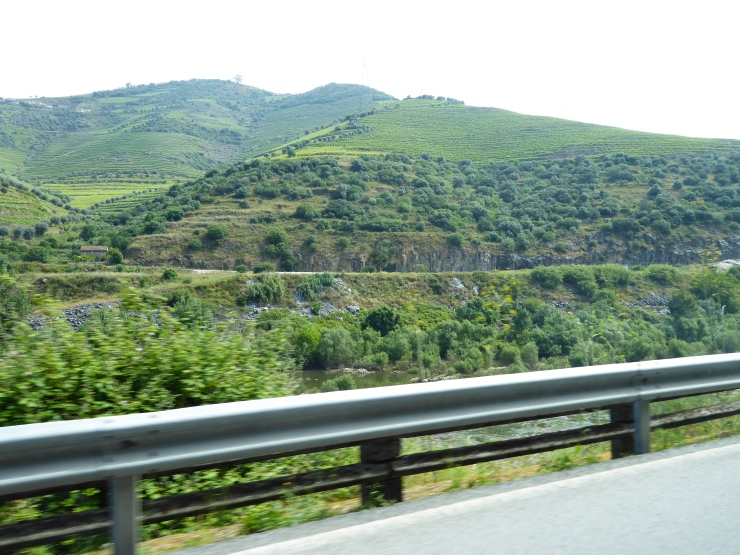 Day Tours from Porto Douro Valley