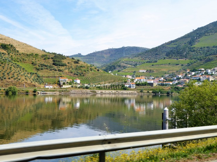 Douro Valley Tours from Porto