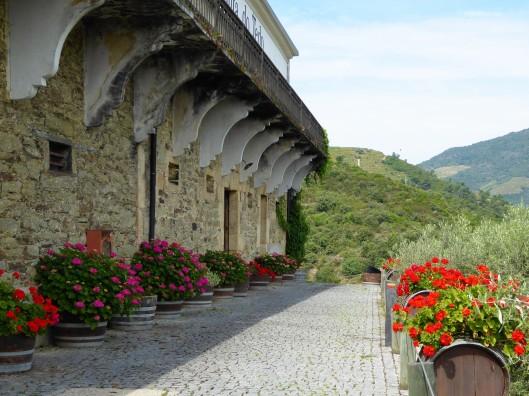 Quinta do Tedo Portugal Douro
