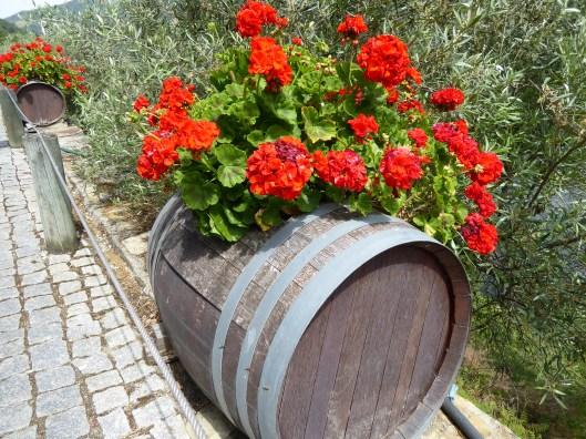 Portuguese vineyards wineries