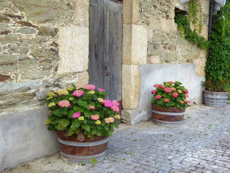 Porto Quinta Wine Tour