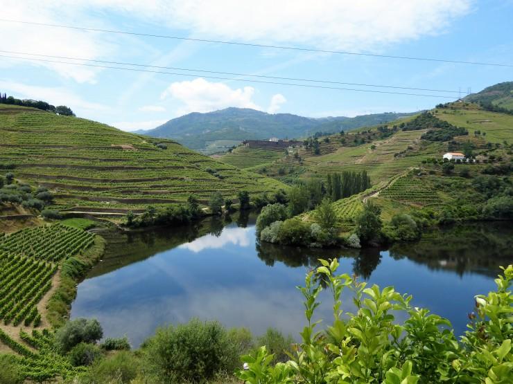 Douro Valley Quinta Views