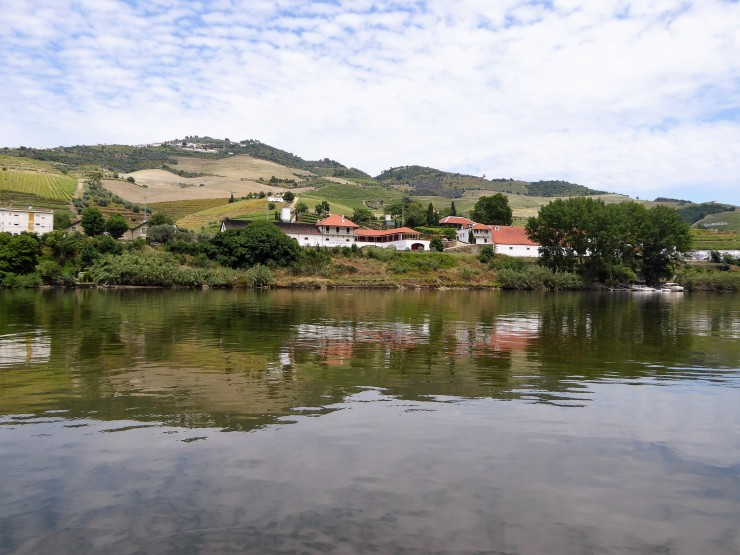 Douro Valley Boat Ride
