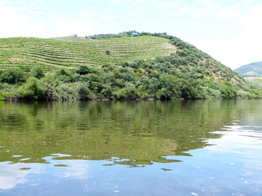 Douro Valley Boat Trip Tour