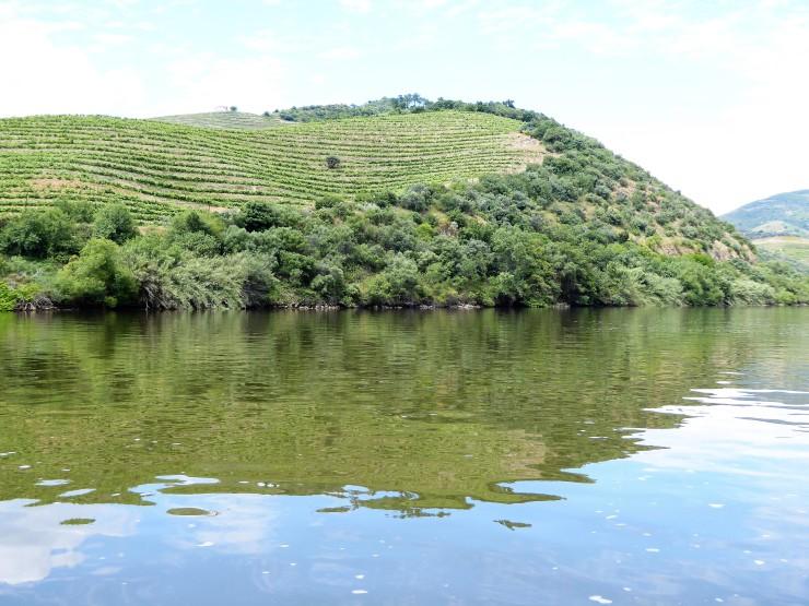Douro Valley Boat Trip Tour