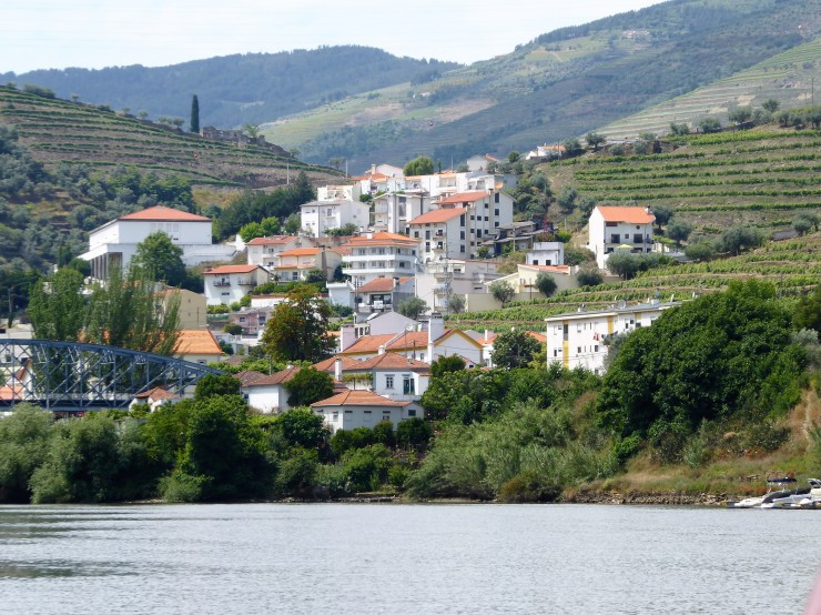 Douro Valley Wine Tour Living Tours