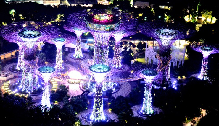 Gardens by the Bay At Night