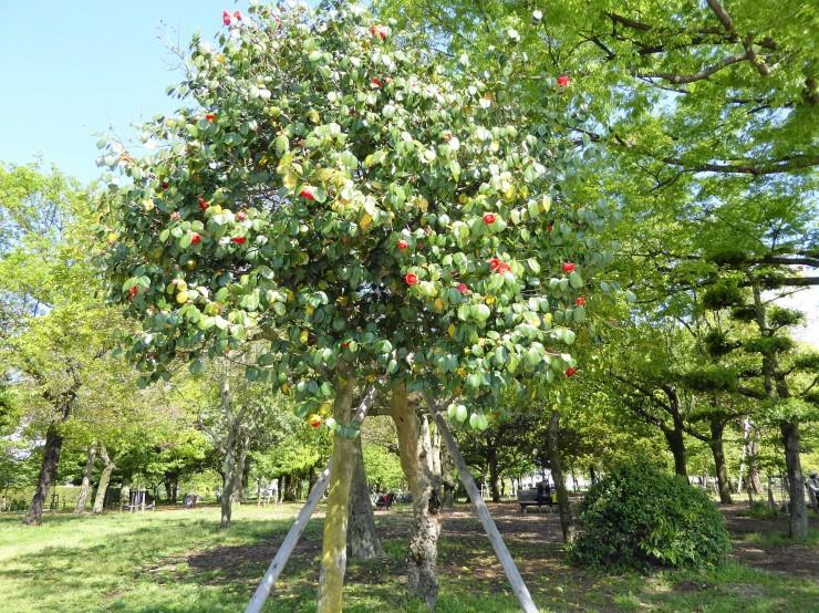 gardens Hiroshima