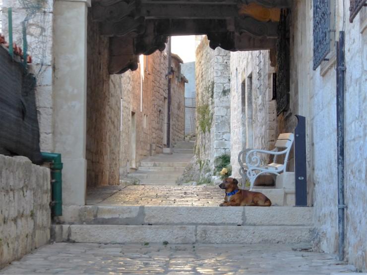 Hvar Old Town Streets
