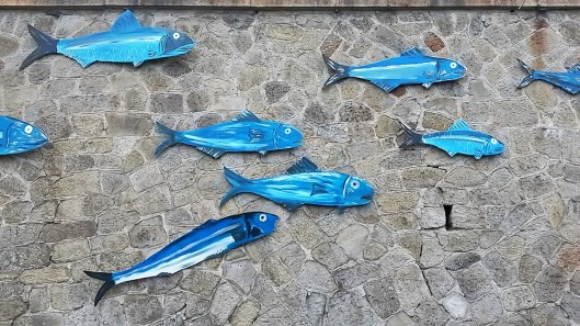 Anchovy Fish Festival Italy