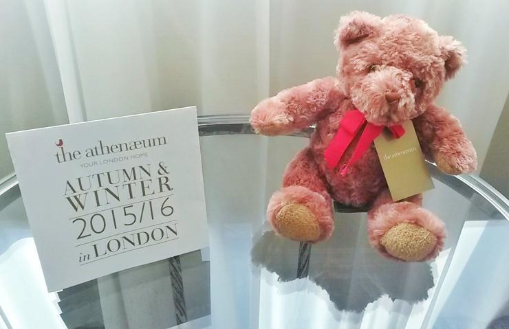 Athenaeum teddy bear