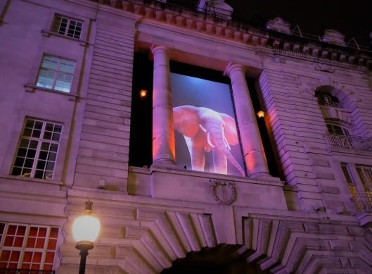 Lumiere London Elephant light