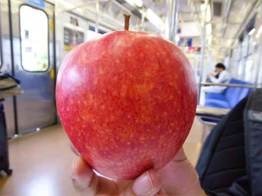 giant big fruit Japan