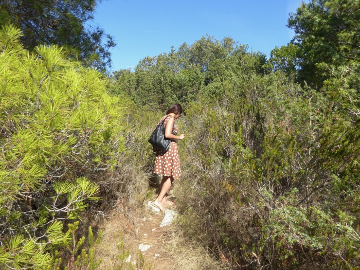 Pakleni islands blog post
