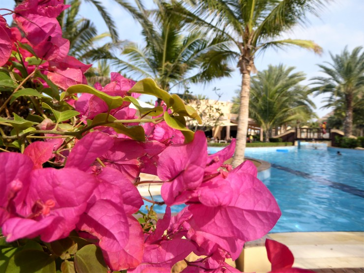 Oman luxury travel