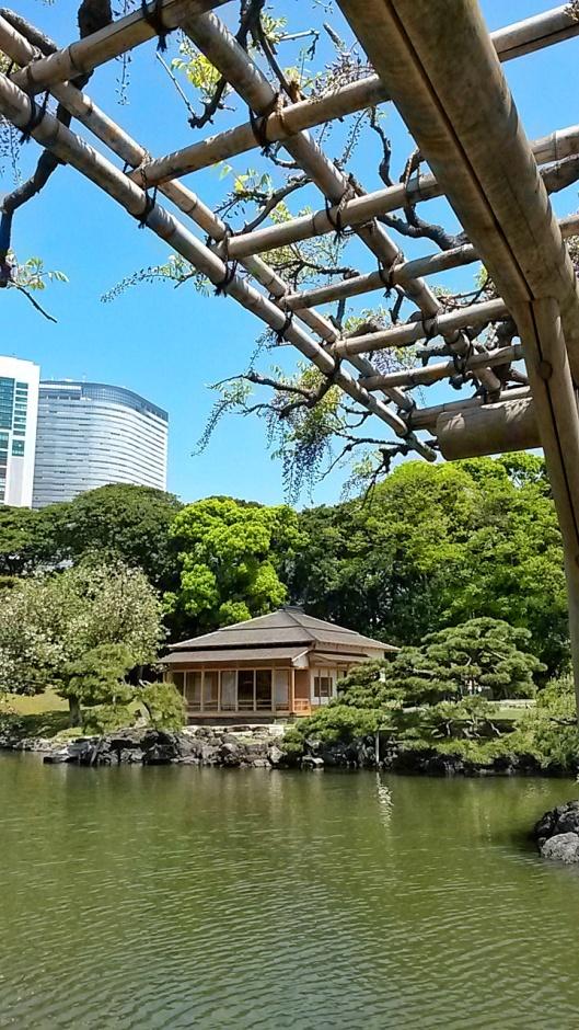 Hamarikyu Gardens Tokyo