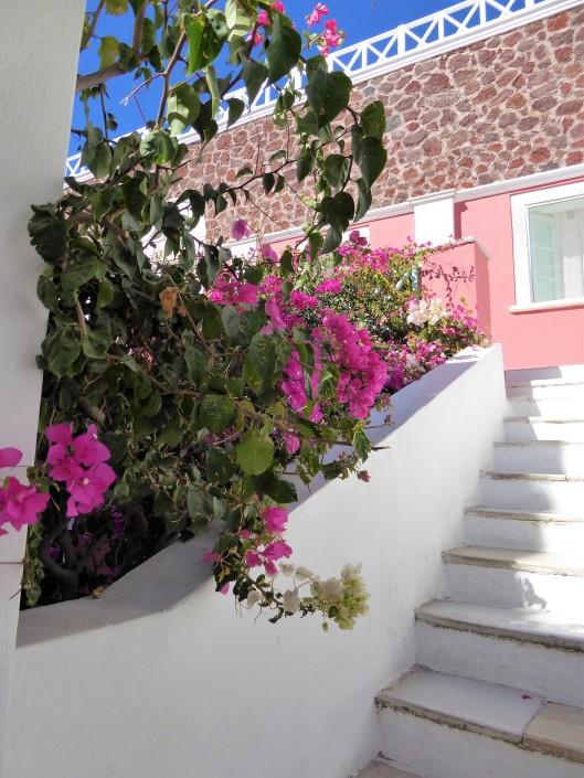 pink pastel buildings Santorini